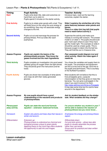 Year 7: Plants & Food (Plants & Ecosystems 7.6)