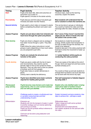 Year 7: Water & Minerals in Plants  (Plants & Ecosystems 7.6)