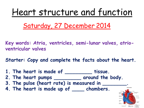 AQA B3 Heart structure and function by zuba102 - Teaching Resources ...