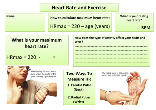 Health Related Exercise Worksheet