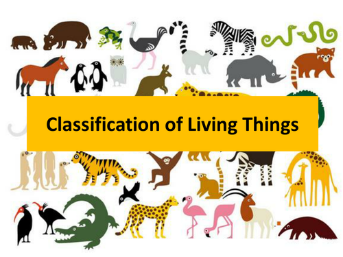 Ks2 Classification Of Living Things 11007510 on Science Worksheets For First Grade Free