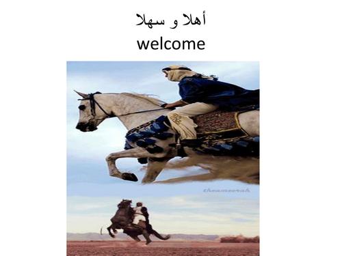 Arabic objects + verbs ماذا تفعل