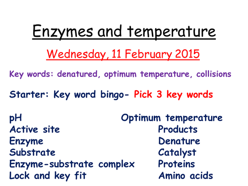 enzymes and temperature coursework