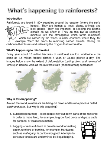 Rainforest deforestation worksheet