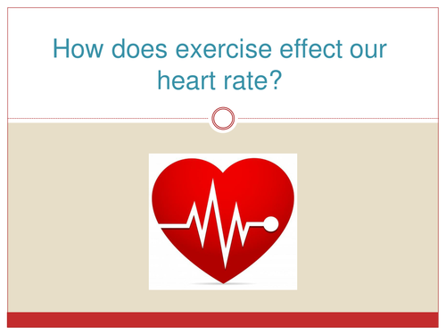 Heart Rate Experiments Recording Sheets And Presentation By