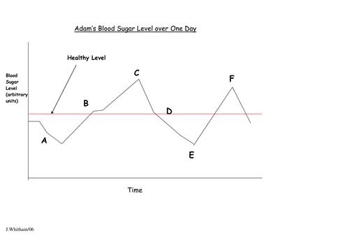 Blood Glucose Control Homeostasis