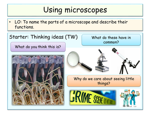 Cells topic - Year 7