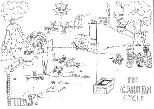 Carbon Cycle Cartoon Revision Yr 10 by bridget stevens – Carbon Cycle Worksheet