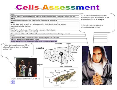 Blended assessments for KS3