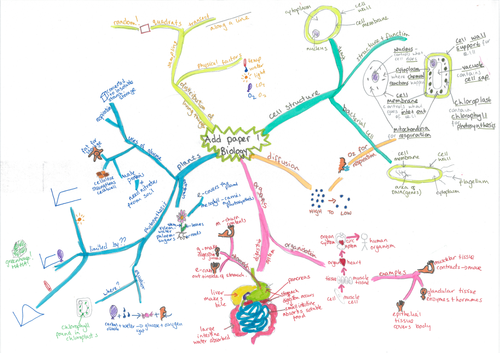AQA additional science - B2, C2 & P2 part 1 mind maps
