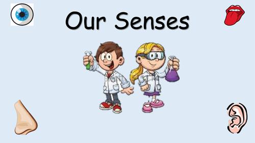 Senses Powerpoint KS1