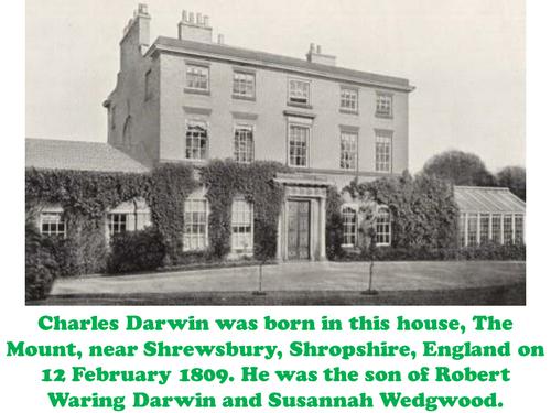 Charles Darwin Biography KS2