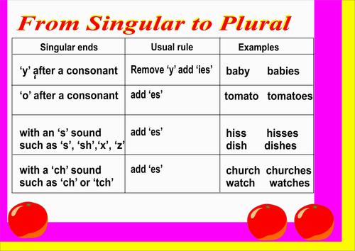 SINGULAR AND PLURAL TEACHING AID