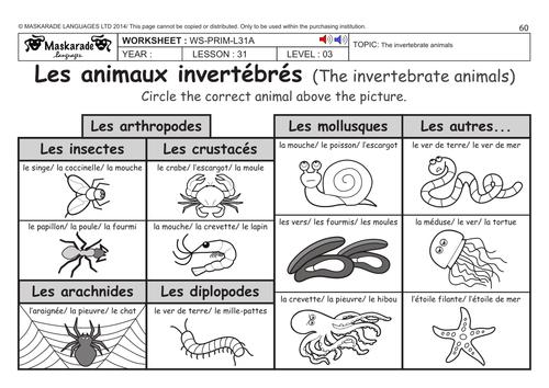 FRENCH KS2 Level 3 KS3 Year 7 Vertebrate and invertebrate – Invertebrates Worksheet
