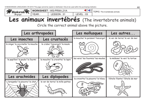 french ks2 level 3 ks3 year 7 vertebrate and invertebrate animals by maskaradelanguages. Black Bedroom Furniture Sets. Home Design Ideas