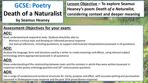 Essay Template For Edexcel English Literature Poetry By Kellyspain  Poetry Analysis Wjec Eduqas Gcse English Literature Poetry Resources