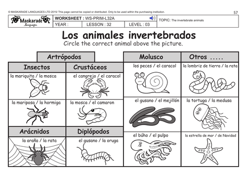 SPANISH KS2 Level 3 KS3 Year 7 Vertebrate and invertebrate – Vertebrate Worksheet