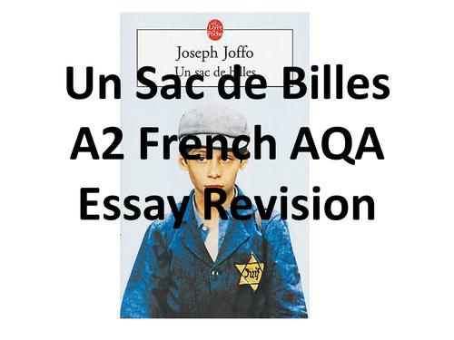 Un Sac De Billes Essay Revision