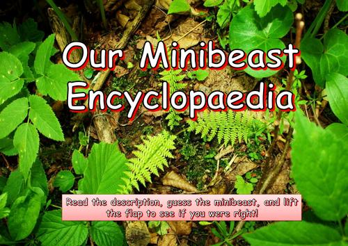 Make a Class Minibeast Encyclopaedia