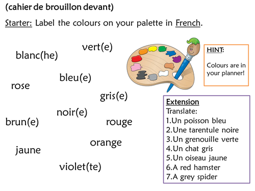 French Adjective Agreement And Placement By Hmblurton89 Teaching