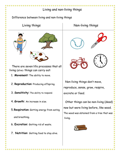 Difference Between Living And Non Living Things By