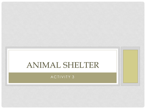Animal Shelter CAB Activity 3 Guide