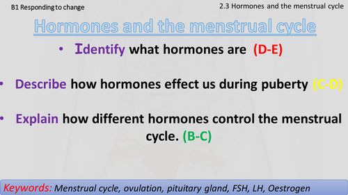 AQA B1.2.3 Hormones and the menstrual cycle
