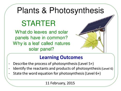 Complete Grade 6-12 Unit: Plants & Ecosystems (7.6)
