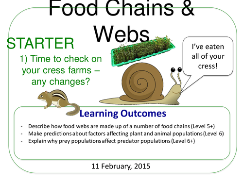 Grade 6-12: Food Chains & Webs (Plants & Ecosystems 7.6)