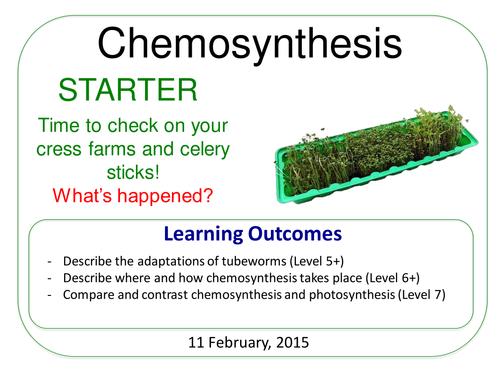 Grade 6-12: Chemosynthesis (Plants & Ecosystems 7.6)