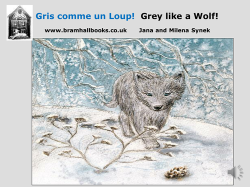 Gris comme un Loup!/Grey like a Wolf! POWERPOINT