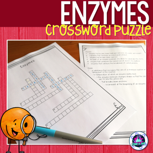 Crossword On Enzymes Answers | printable brackets