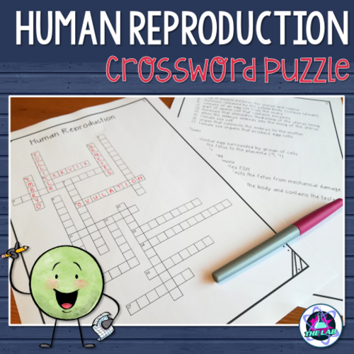 Human Reproduction Crossword Puzzle