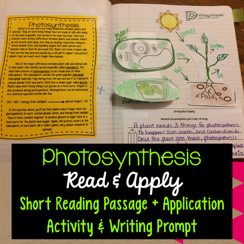 Photosynthesis read apply reading passage interactive notebook photosynthesis read apply reading passage interactive notebook activity writing prompt by smithscienceandlit teaching resources tes ccuart Image collections
