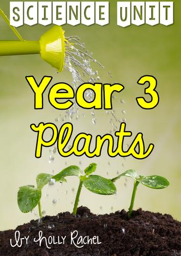 Year 3 Plants