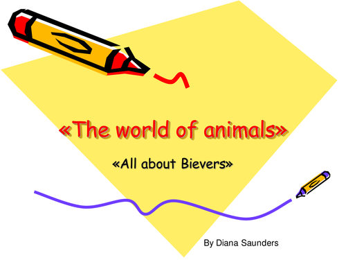 All about Beavers maths