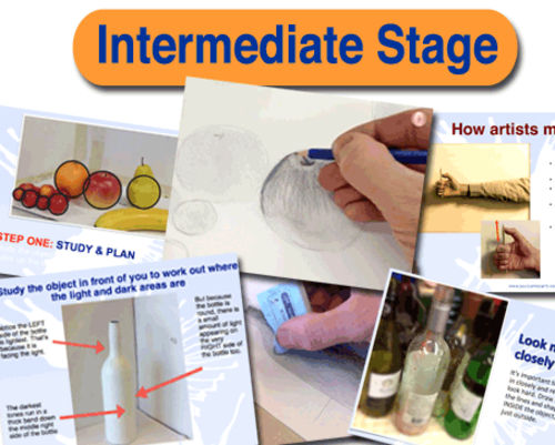 Intermediate 3rd Drawing Stage
