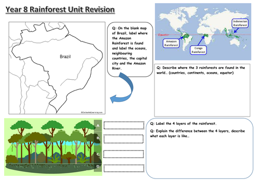 Rainforest revision worksheet by DommieBee Teaching Resources Tes – Rainforest Layers Worksheet