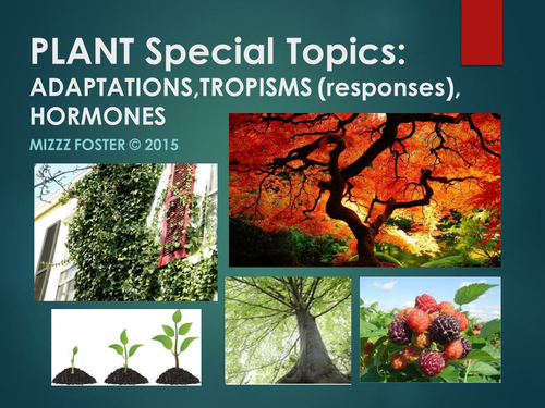 Plants Special Topics: Adaptations, Tropisms and Hormones