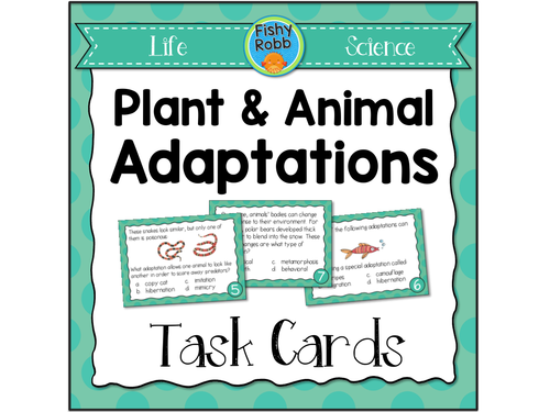 Plant and Animal Adaptations by FishyTeacher Teaching Resources – Plant Adaptations Worksheet
