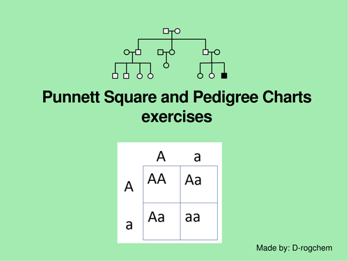 Biology: punnett square problems and interpretation of pedigree charts