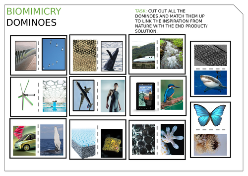 Biomimicry Dominoes & Answers Matching game