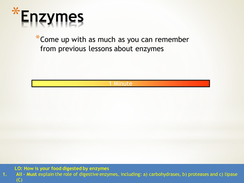 Enzyme revision powerpoint and work sheet KS3-KS4
