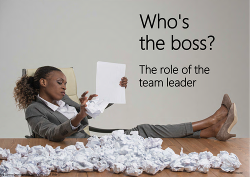 Who's the boss? The role of the team leader