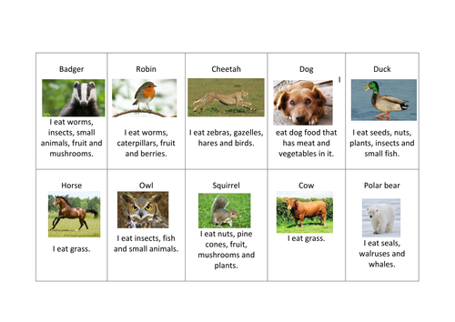 Carnivore Herbivore And Omnivore Cards For Sorting Activity By