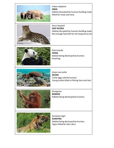 GCSE Biology - Endangered species (SEN / Foundation)