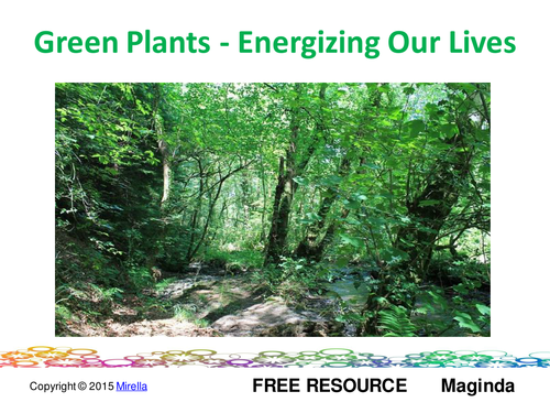 Green Plants – Energizing Our Lives