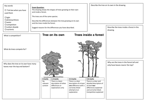 QWC Writing Frame with picture prompt - Plant Competition