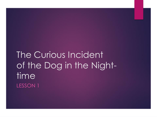 'The Curious Incident of the Dog in the Night-time' full novel SoW.