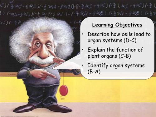 AQA B2.5 - Tissues, organs and organ systems lesson
